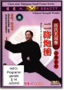 Chen-style Taijiquan Small Frame...